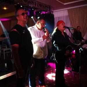 petrecere aniversara cu muzica live